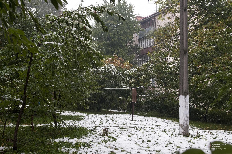 Погода ст темиргоевская краснодарский край курганинский район