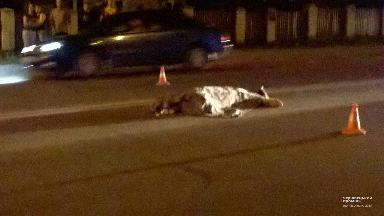 Прикарпатка, яка минулої ночі загинула під колесами автомобіля, переходила дорогу у невстановленому місці