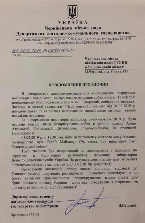 Керівник департаменту ЖКГ звернувся до поліції через масове отруєння собак у Чернівцях
