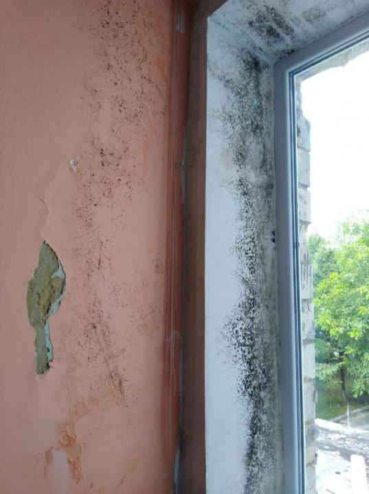 У 22 школі, в якій реалізовують проєкт НЕФКО, зі стелі тече вода, а стіни вкриті пліснявою