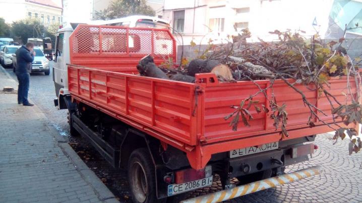 На Університетській під час пиляння дерева ледь не пошкодили авто
