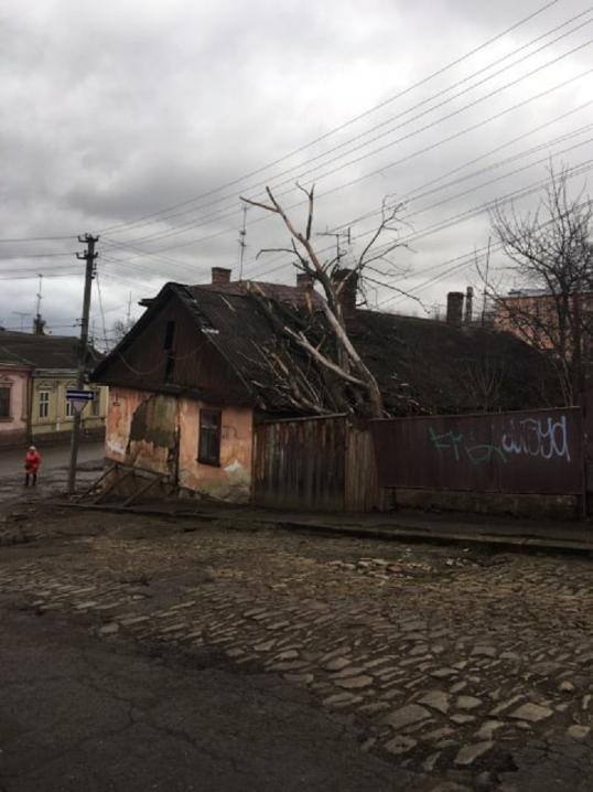 Розтрощені авто, зламані паркани, будинок без даху: наслідки негоди у Чернівцях