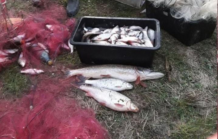 На Дністровському водосховищі викрили двох браконьєрів