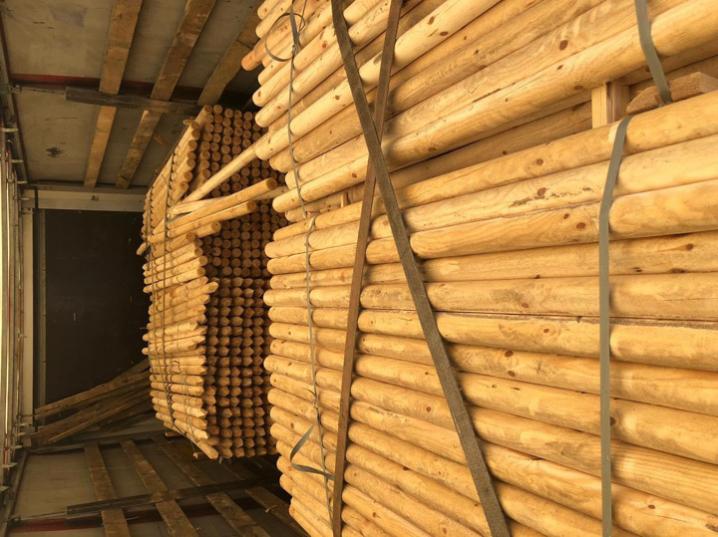Буковинські митники вилучили деревину вартістю понад 200 тисяч гривень