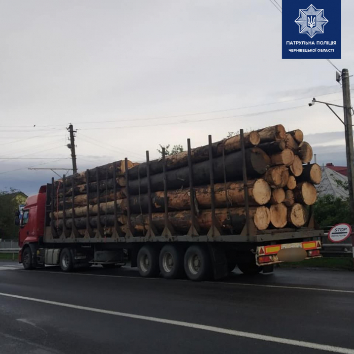На Буковині патрульні зупинили вантажівку, яка перевозила деревину без документів