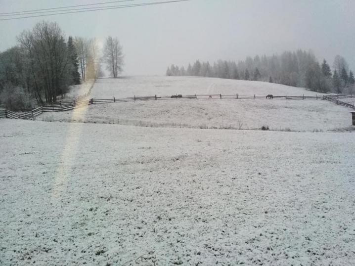 У Карпатах Буковини випав перший сніг (ФОТО)