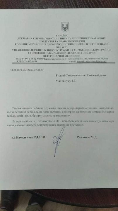 Міський голова Сторожинця прокоментував ситуацію з отруєнням безпритульних тварин:наразі цим займається поліція