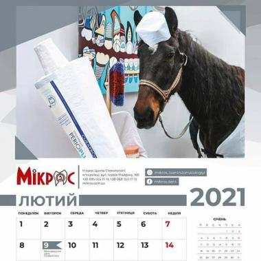 У Чернівцях у переддень Різдва презентували благодійний календар для допомоги безпритульним тваринам