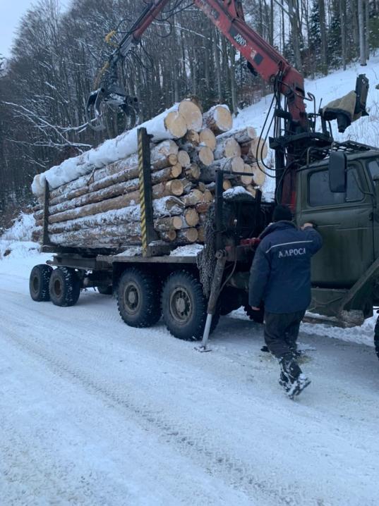На Буковині прикордонники зупинили вантажівку з нечипованою деревиною (ВІДЕО)