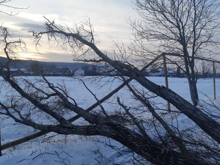 Спилювали дерево, а пошкодили газопровід: на Буковині село залишилось без тепла