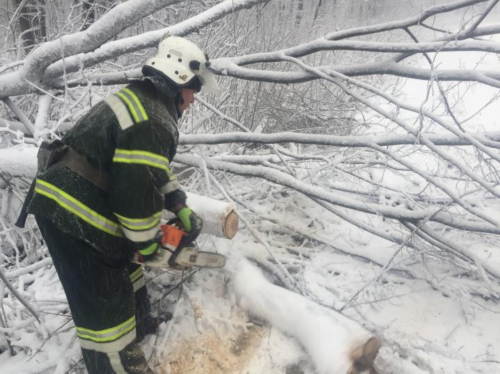 Повалені дерева та заблоковані авто: на Буковині ДСНСники боролися із наслідками негоди