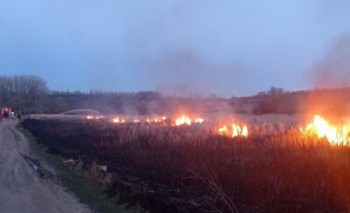 Через підпалену траву, буковинець ледь не залишився без будинку