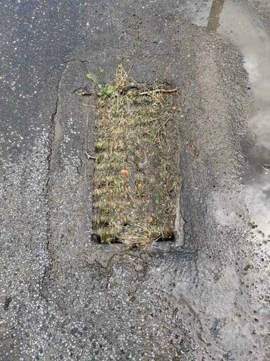 Чому місто пливе після злив: чернівчани публікують фото нечищених зливових мереж