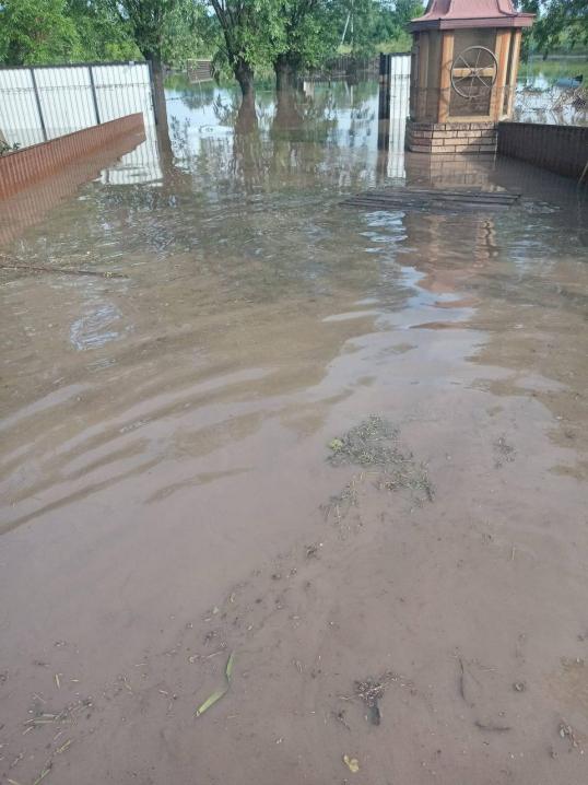 На Буковині загинули свійські тварини та затопило домогосподарства через сильну зливу(ФОТО)