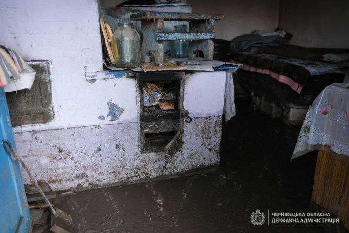 Орієнтовна сума шкоди від негоди - декілька десятків мільйонів гривень, – заступник голови Чернівецької ОДА