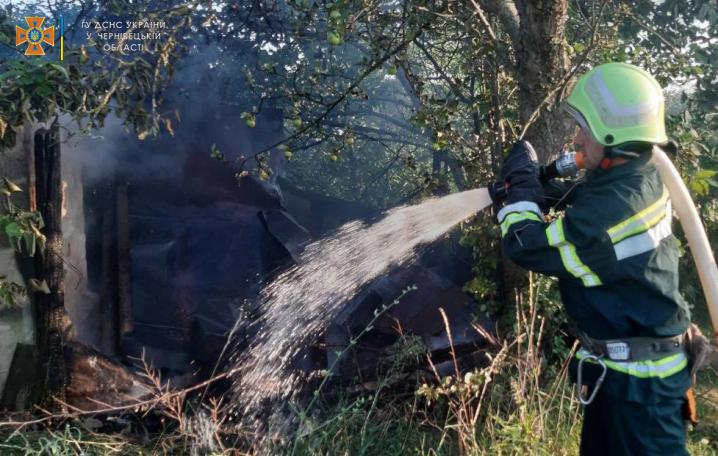 На Вижниччині двоє чоловіків намагалися самотужки погасити пожежу і надихалися чадним газом