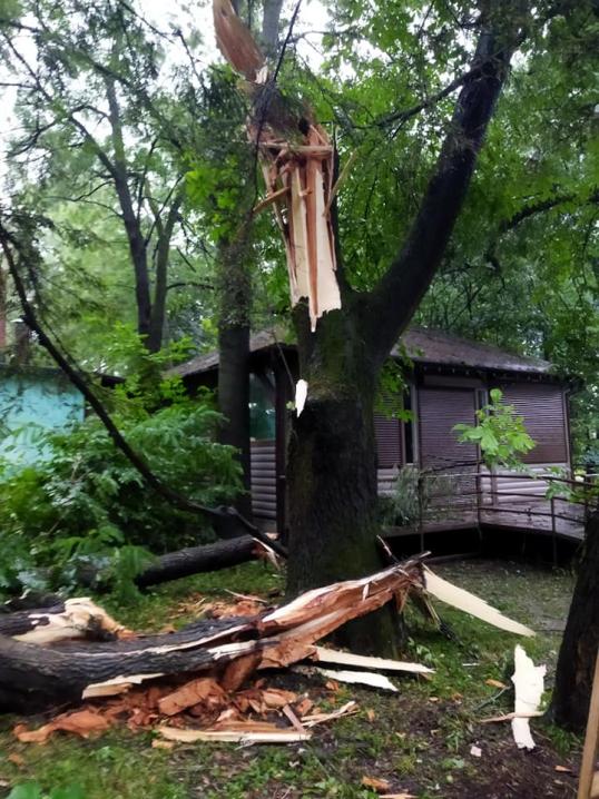 У Чернівцях пройшла негода: наслідки зливи і шквального вітру (ФОТО/ ВІДЕО)