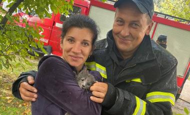 Рятувальники врятували кота, котрий заліз на високе дерево