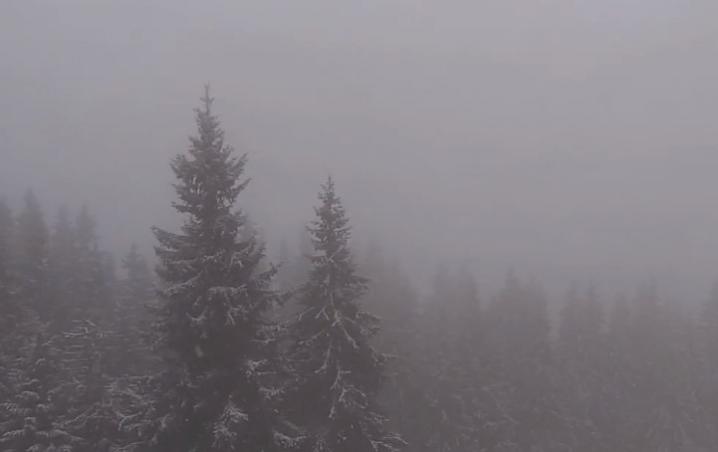На Буковелі сьогодні випав перший сніг